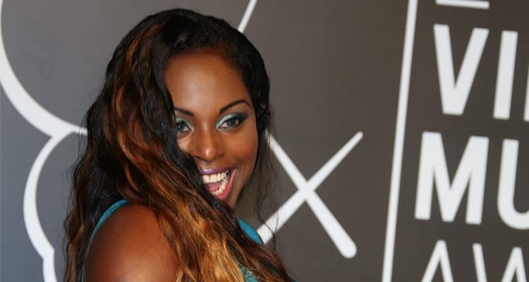 Foxy Brown 2014 Foxy Brown a Profile of Her